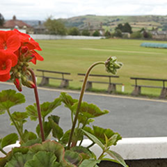 Elland Cricket Club image #14